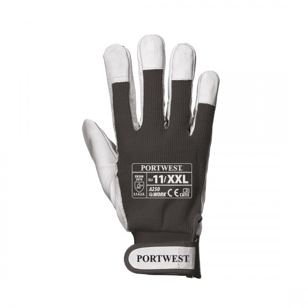 Tergsus Handschuh